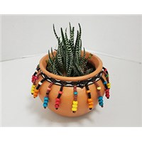 4_in_Terra_Cotta_Planter_-_14.99